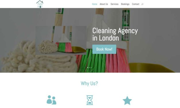 Tidy House Cleaning Services London