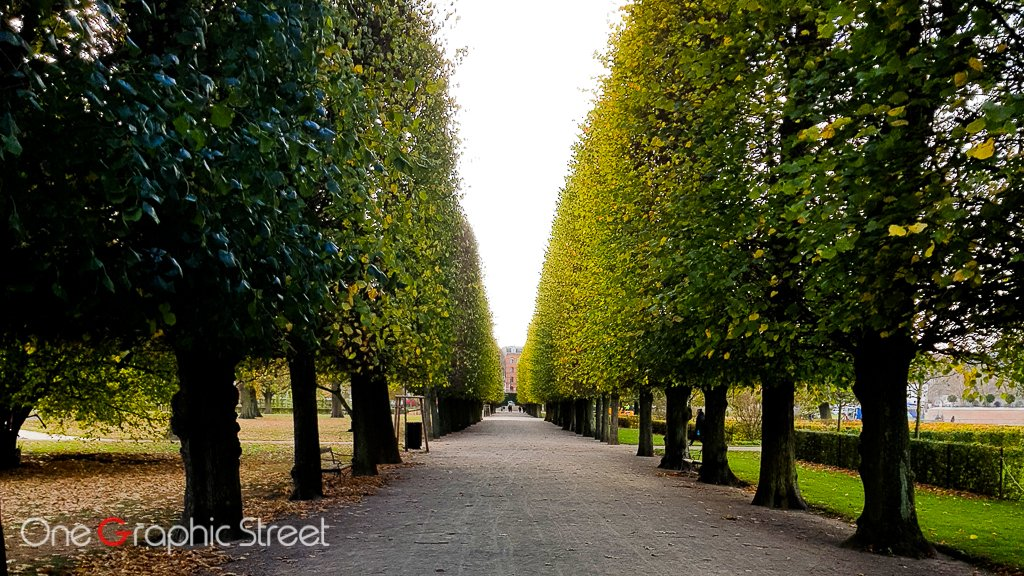 Imaginary corridor of trees taking to Rosenborg Castle